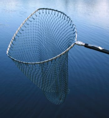 3AK - Errol (Bow Shape) Trout Telescopic Landing Net